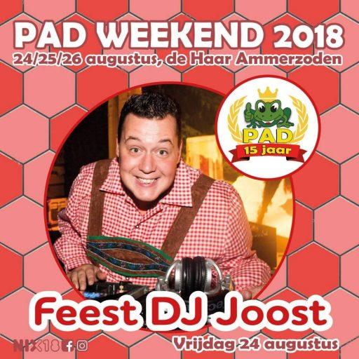 Feest DJ Joost